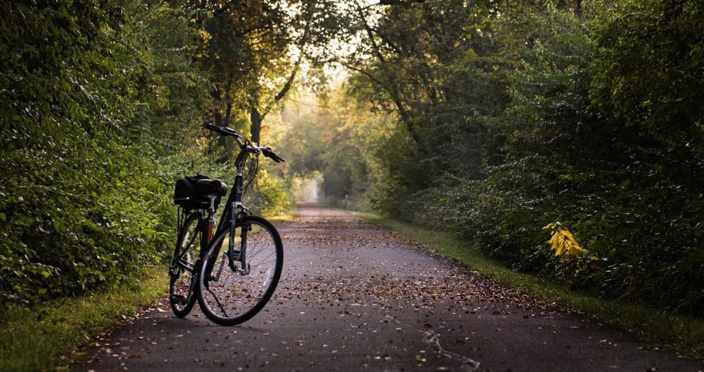bike, trail, bicycle