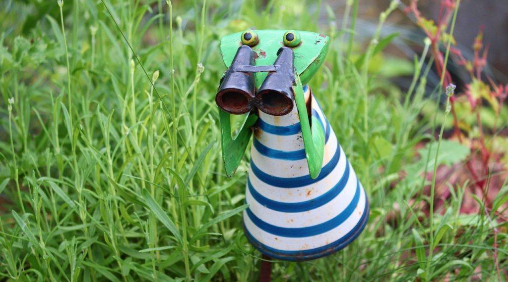frog, binoculars, distant view
